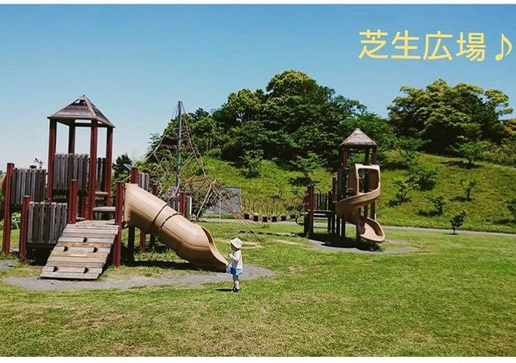 今日は暖かくなり、最近よく行く波津の 『 #小堤山公園 』を紹介します🌳