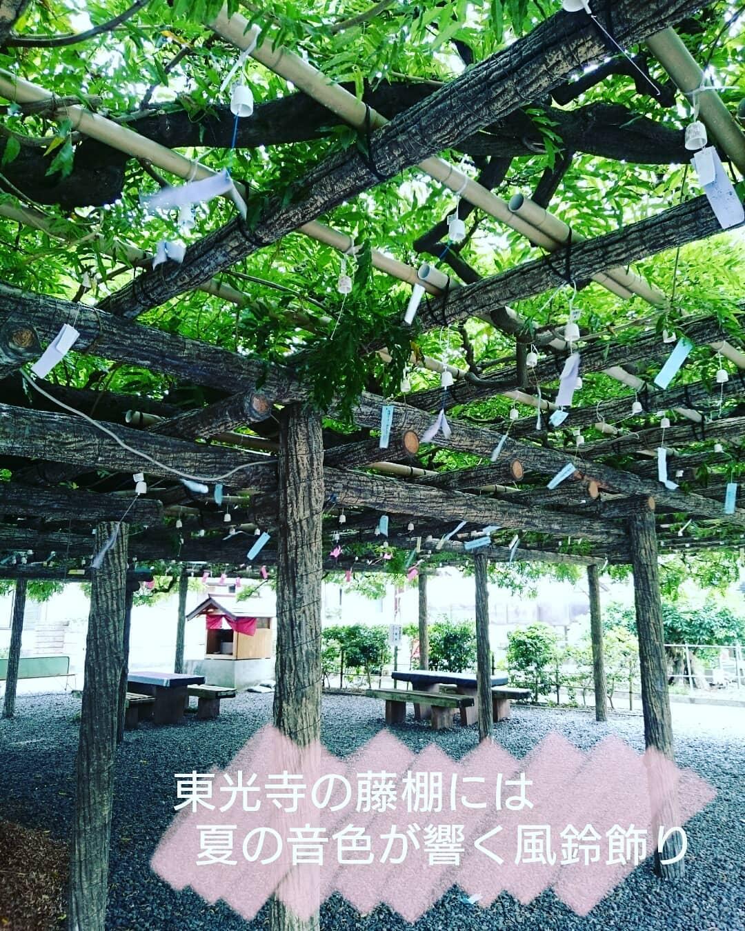 ☆夏の音色で彩られる東光寺