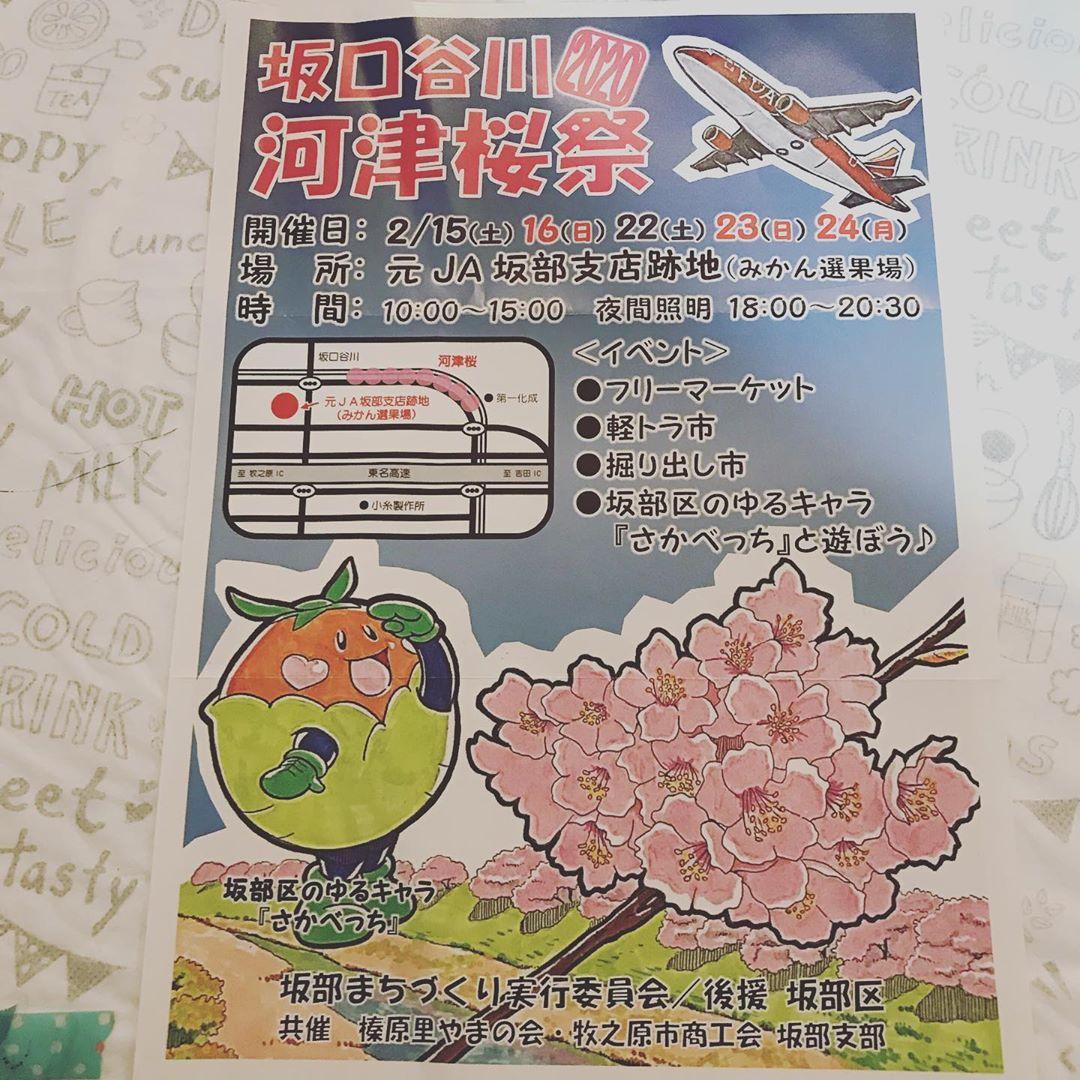 ☆坂口谷川の河津桜祭🌸でイベント♪